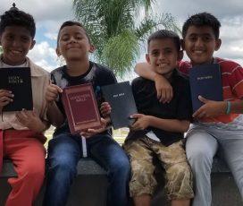 arab kisfiúk Bibliával