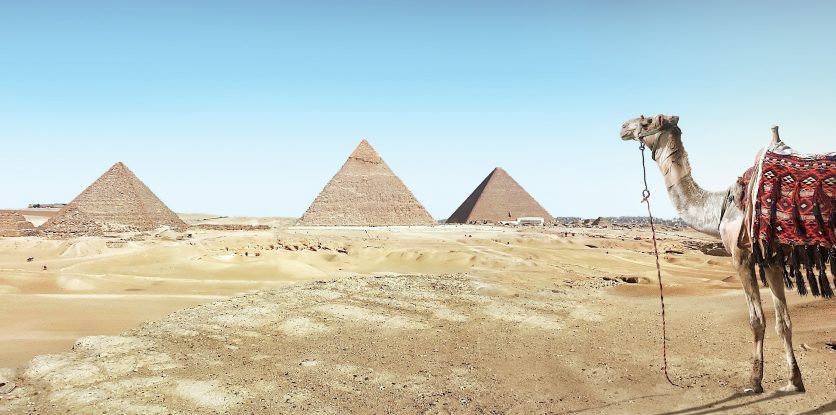 sivatag, teve, piramisok