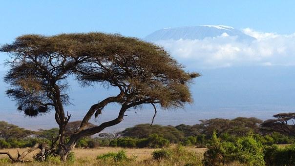 afrikai tájkép