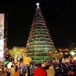 Hatalmas karácsonyfát állítottak a szír keresztények a frontvonalon